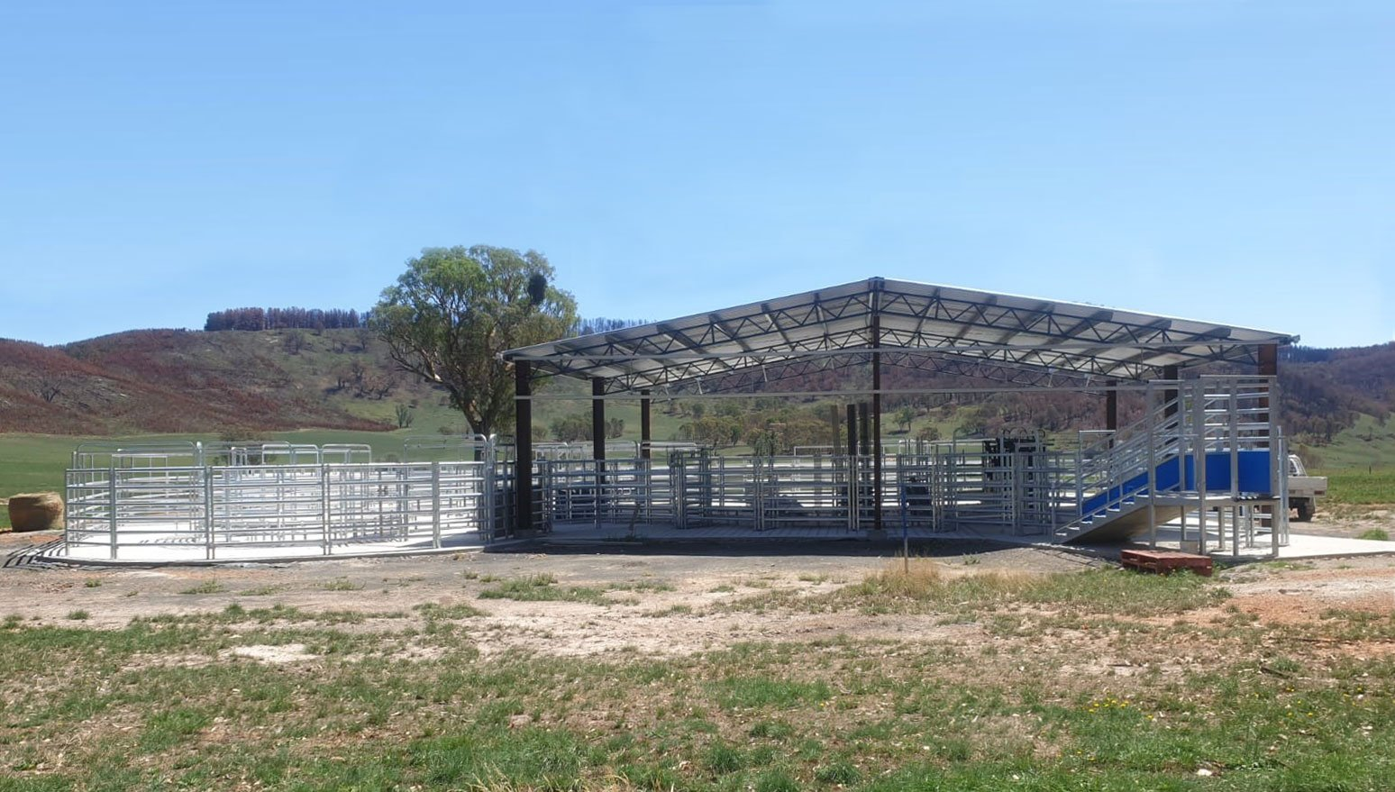 Improving Cattle Handling with Te Pari Steel Cattle Yards
