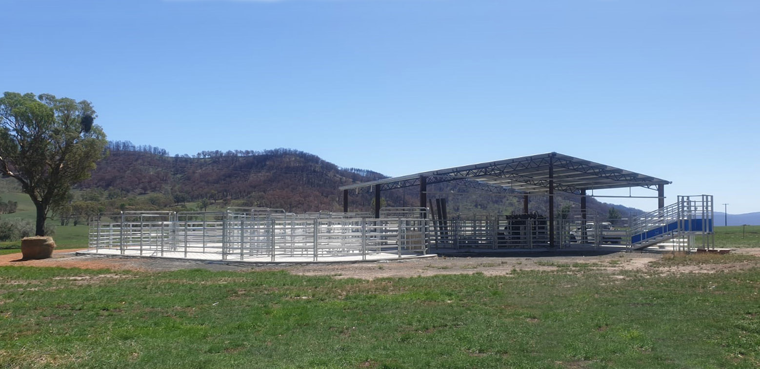 George Kucka's new Cattle Handling Facility designed and installed by Te Pari steel cattle yard by te pari australia
