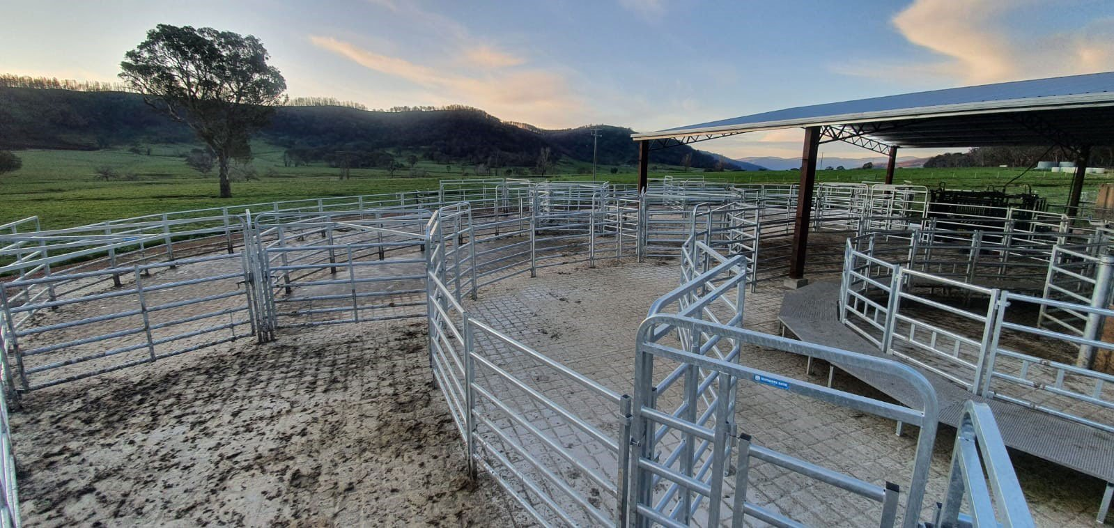 With our new system (Te Pari Cattle Yard's), Its a one person job and it couldn't be easier