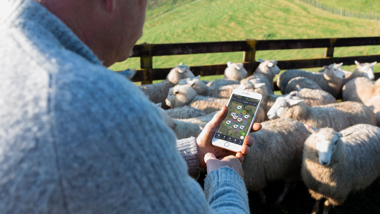Goal Setting For Successful Farming