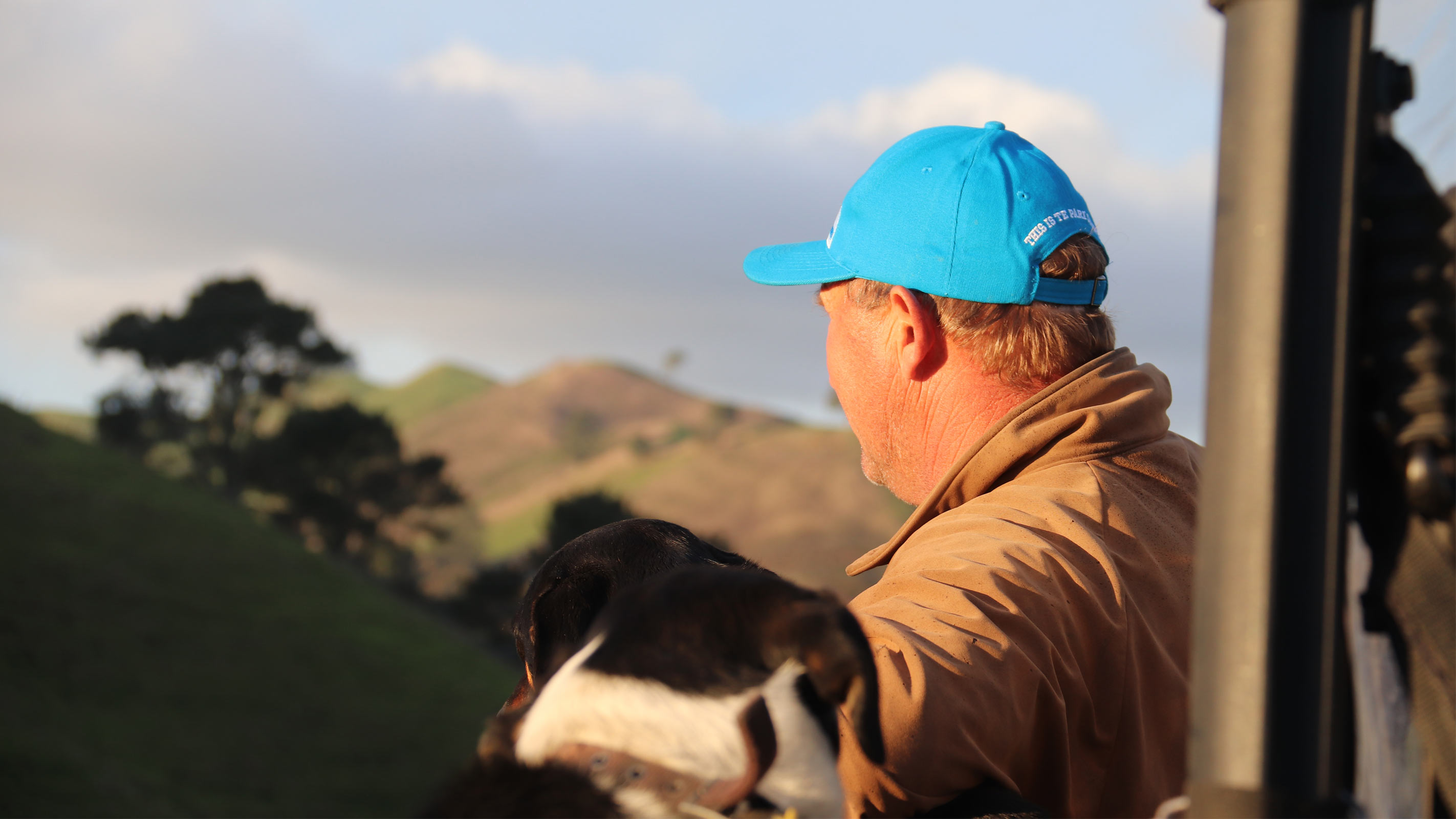 mark stokman looking over his farm with his dog