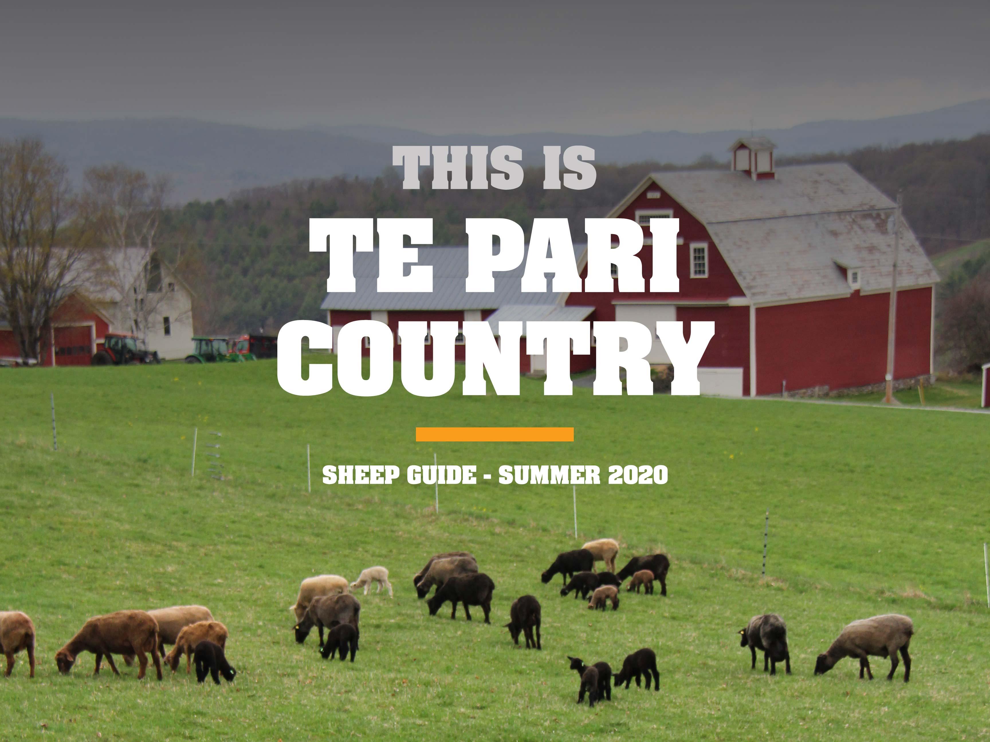 USA Sheep Guide Summer 2020