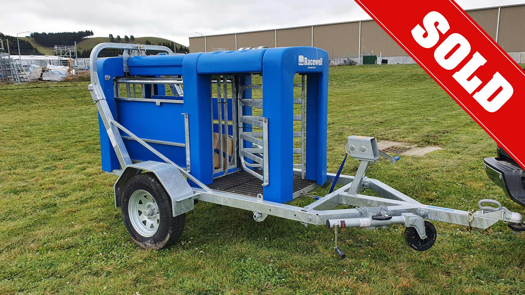 Used Racewell DR3 Sheep Auto Drafter
