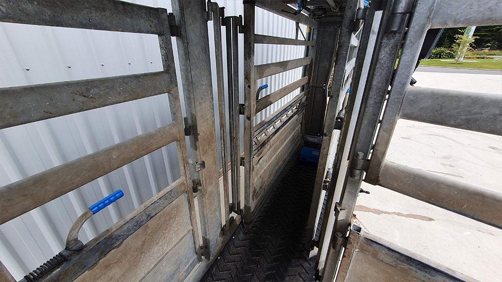 Used Racewell 3 Way Drafting Cattle Crush